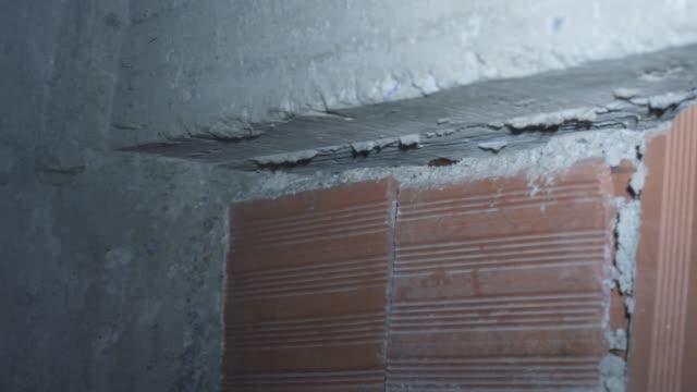換気中のゴキブリ - ゴキブリ点の映像素材/bロール