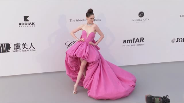 Coco Rocha at the amfAR Cannes Gala 2019 during The 72nd Cannes Film Festival on May 14 2019 in Cannes France
