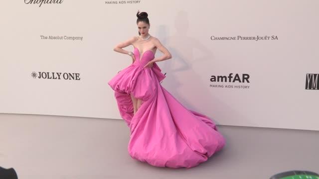Coco Rocha Mallika Sherawat Dasha Yanina Viktoriya Sasonkina Renee Willett DJ Ruckus and more on the red carpet for the 2019 Cannes amfAR Gala at...