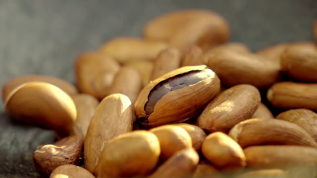 cocoa beans falling in slow motion - medium group of objects stock videos and b-roll footage