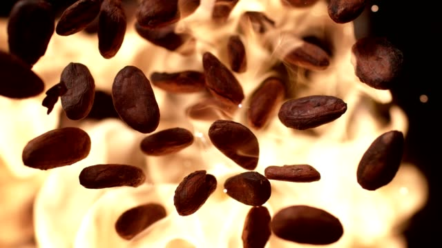 vídeos y material grabado en eventos de stock de granos de cacao tostado en llamas. cámara súper lenta - potasio