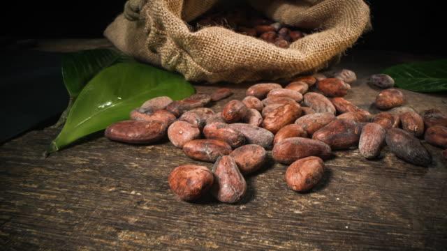kakaobohnen - roh stock-videos und b-roll-filmmaterial