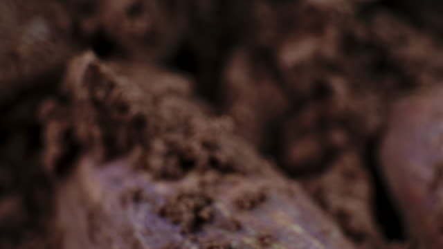 cocoa chocolate powder almond seeds macro shot - cocoa powder stock videos & royalty-free footage