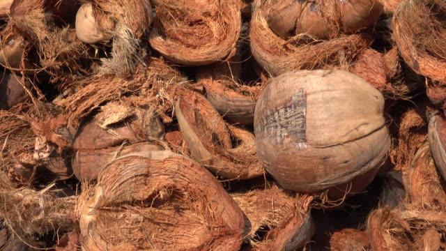coconut fiber - coconut stock videos & royalty-free footage