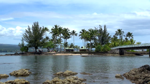 coconut island - hilo, hawaii - big island hawaii islands stock videos & royalty-free footage