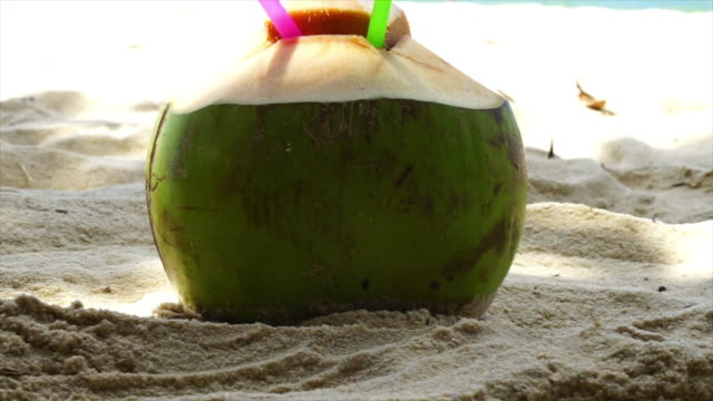 coconut on the beach patong - rio de janeiro stock videos and b-roll footage