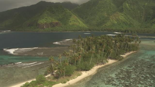coconut palms, island and coast, tahiti, french polynesia - tahiti stock videos & royalty-free footage