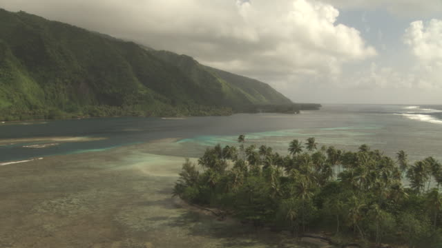 Coconut palms, island and coast, Tahiti, French Polynesia