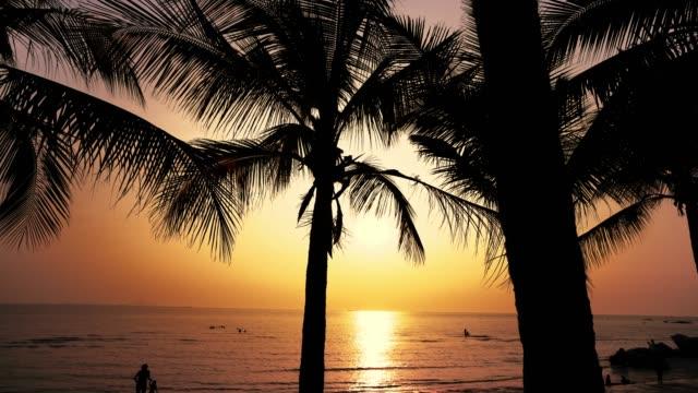 ココナッツの海とビーチ - ヤシ点の映像素材/bロール