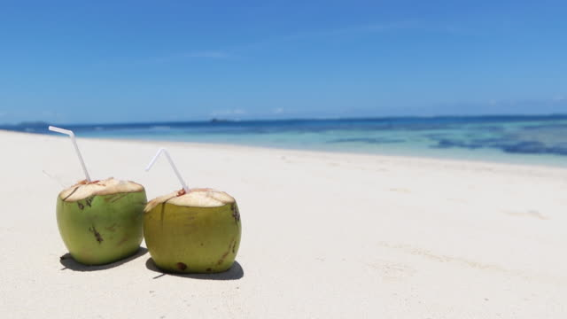 coconuts on a beach - fiji stock videos & royalty-free footage