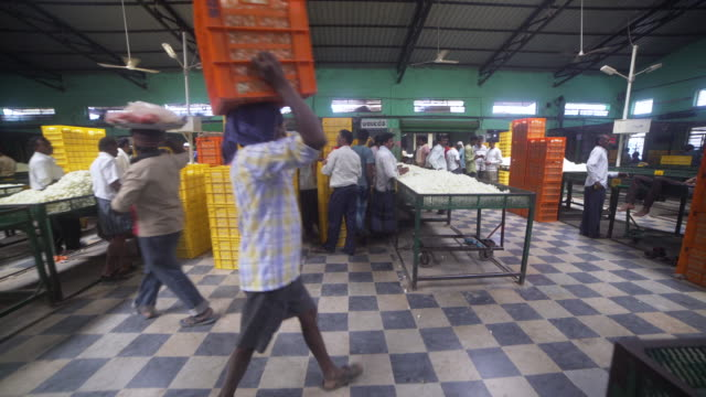 cocoon silkworm market at ramanagara. man carrying box - indischer subkontinent abstammung stock-videos und b-roll-filmmaterial