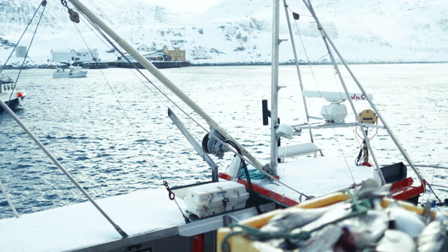 cod fishing industry in the arctic sea: fishing boats full of fish - atlantic ocean stock videos & royalty-free footage