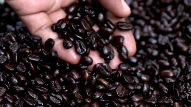 coffee bean pouring form hand slow motion - roasted coffee bean stock videos & royalty-free footage