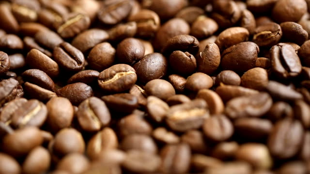 coffee bean raw material ingredient - hot drink stock videos and b-roll footage