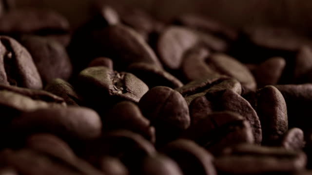 coffee bean - mocha stock videos and b-roll footage