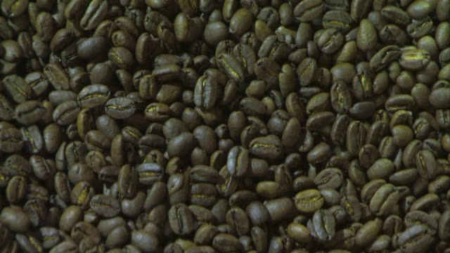 ECU Coffee beans being grinding / Cape Town, Western Cape, South Africa