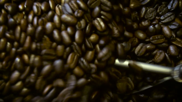 Coffee Beans Being Stirred in a Cooling Bed