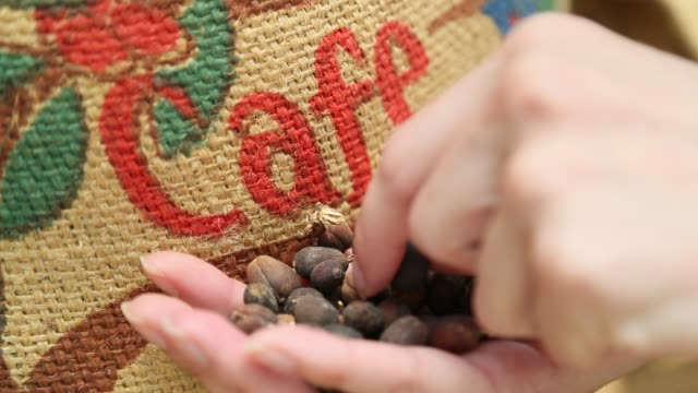 coffee beans close-up - costa rica stock videos & royalty-free footage