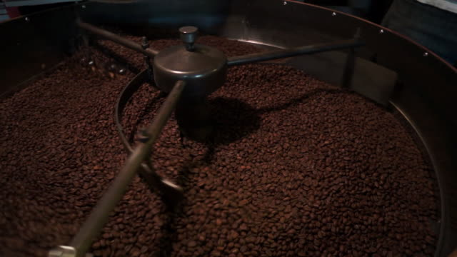 Coffee beans cooling after being released from roaster