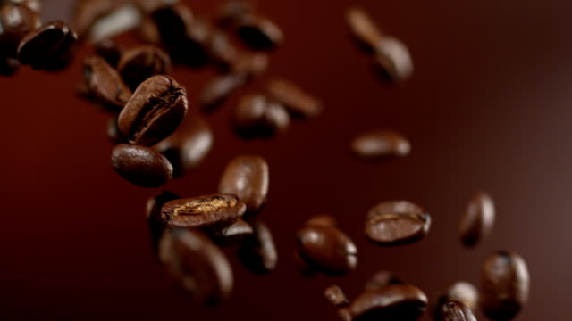 coffee beans falling down - roasted stock videos & royalty-free footage
