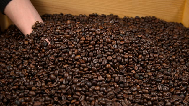Coffee Beans Falling, Slow Motion 4K