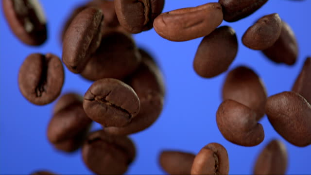 Coffee Beans Falling (Super Slow Motion)