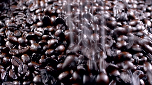 coffee beans - roasted coffee bean stock videos & royalty-free footage