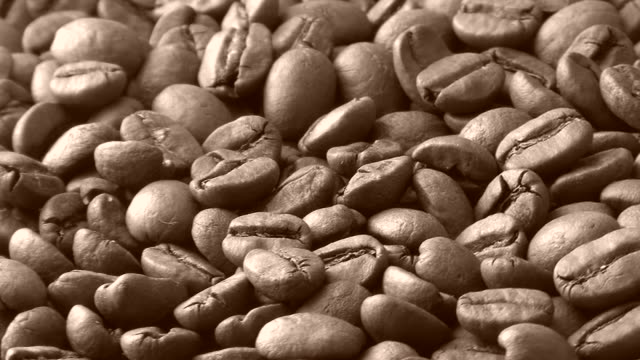 hd, ntsc: coffee beans (video) - sepia stock videos and b-roll footage