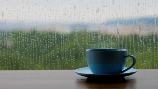 coffee time in a rain day - window stock videos & royalty-free footage