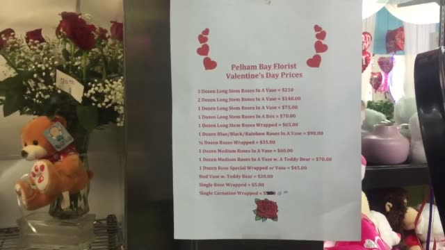 co-floral shop owner liz leduc talks about valentine's day at her store, pelham bay florist on crosby avenue in the bronx. additional shots of liz... - バレンタインデー点の映像素材/bロール