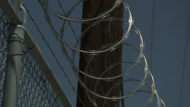 a coil of razor wire runs along the top of a chain-link fence at a prison. - stacheldraht stock-videos und b-roll-filmmaterial