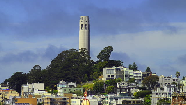 t/l ws coit tower and telegraph hill, san francisco, california, usa - coit tower stock videos & royalty-free footage