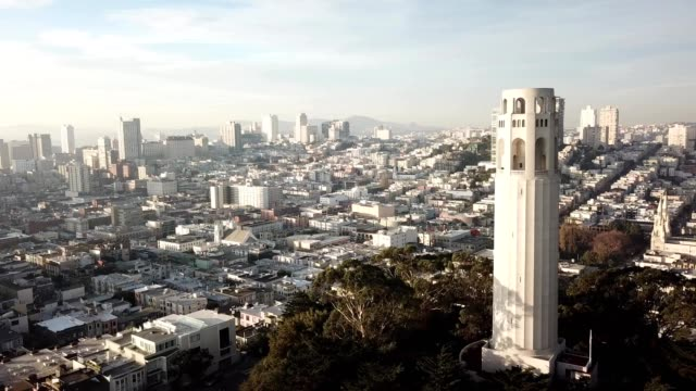 coit tower in san francisco - coit tower stock videos & royalty-free footage