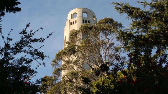 vídeos y material grabado en eventos de stock de coit tower in san francisco with trees and leaves in front of it. - torre coit