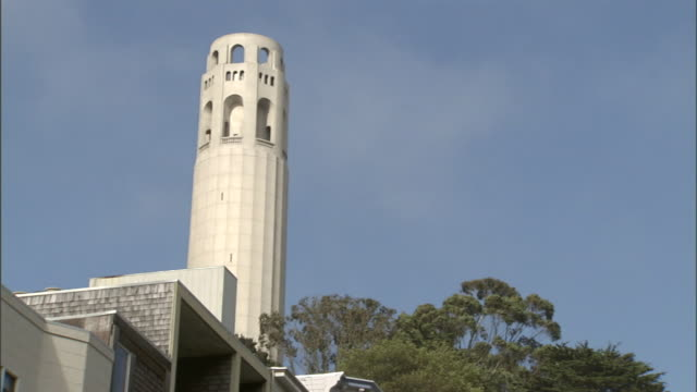 coit tower rises above leafy trees in san francisco. - coit tower stock videos & royalty-free footage