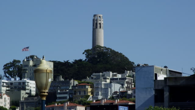 coit tower rises over the rooftops of san francisco. - north beach san francisco stock videos and b-roll footage