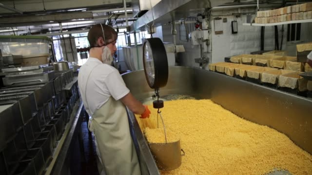 Colby cheese curds are weighed before being poured into molds to make 40 pound blocks of cheese at the Widmer's Cheese Cellars on June 27 2016 in...