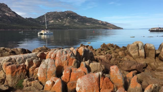 coles bay freycinet national park in tasmania australia - red rocks stock videos & royalty-free footage