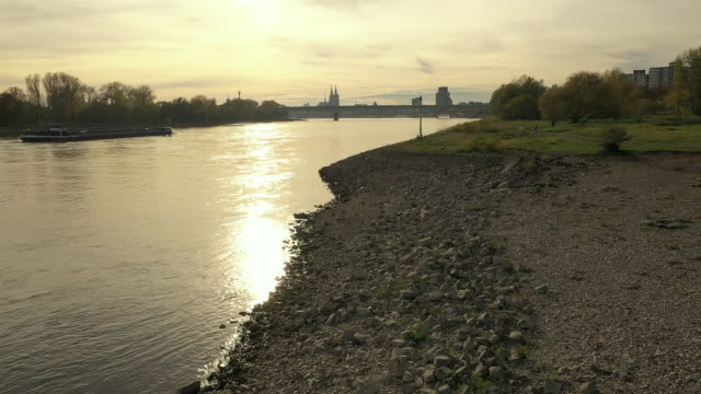 colgone rhine sun - flussufer stock-videos und b-roll-filmmaterial