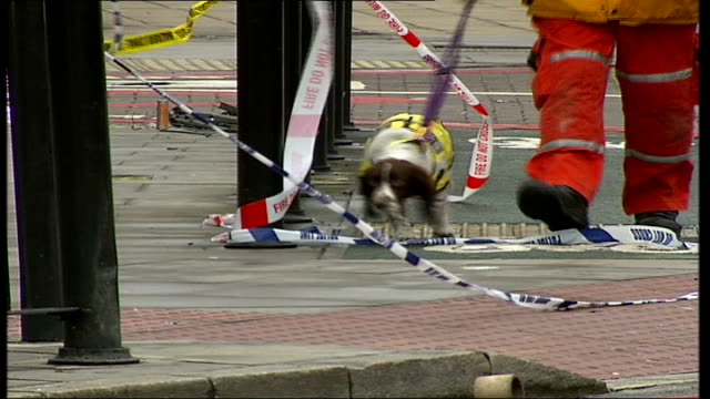 Collapsed building on Commercial Road in Whitechapel ENGLAND London Whitechapel Commercial Road EXT Search dog along over rubble of collapsed...
