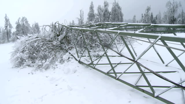stockvideo's en b-roll-footage met collapsed electricity pylon from the ice storm - stroomuitval