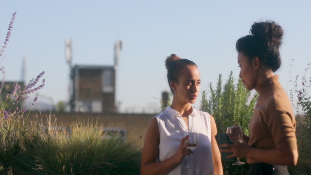 colleagues celebrating in a rooftop bar after work - 2020 business stock videos and b-roll footage