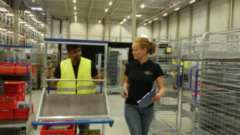 colleagues working in a logistics center - manufacturing occupation stock-videos und b-roll-filmmaterial