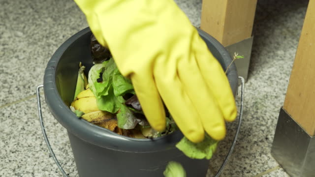 collecting biodegradable waste in a bin - bin stock videos & royalty-free footage