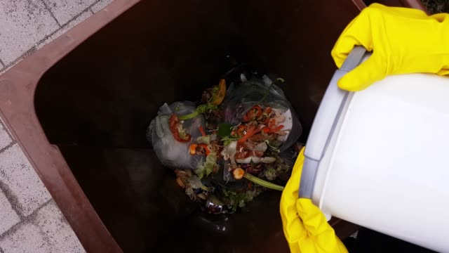 collecting biodegradable waste in a container - lanciare video stock e b–roll