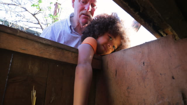 collecting eggs from the chicken hut - caucasian ethnicity stock videos & royalty-free footage