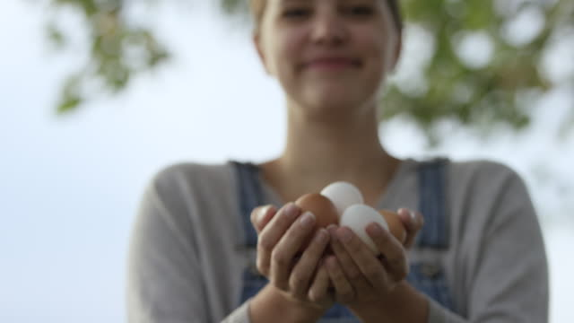 collecting eggs from the chickens - caucasian ethnicity stock videos & royalty-free footage