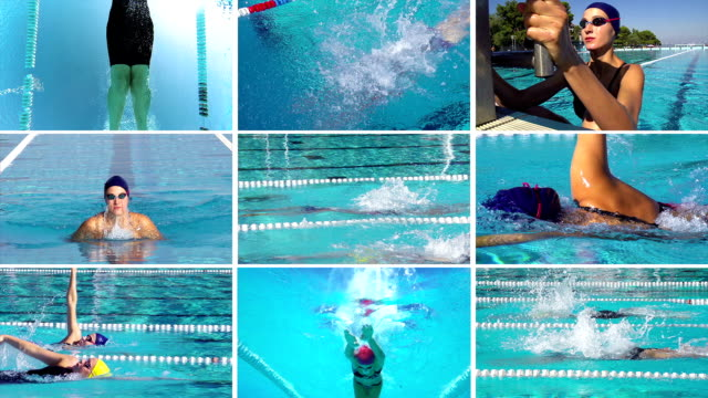 hd montage: collection of swimming sport action - freestyle swimming stock videos and b-roll footage