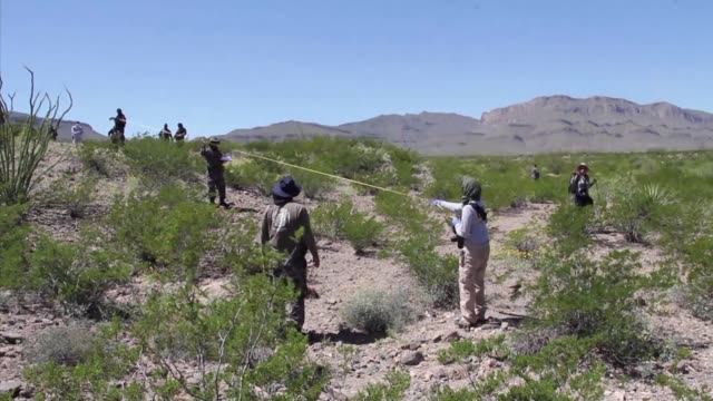 collective of relatives activists and citizens found human remains presumed female on the first day of searching the juarez valley on the border with... - dozen stock videos & royalty-free footage