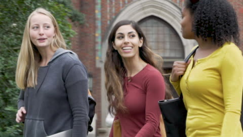 college friends on campus - person in further education stock videos & royalty-free footage